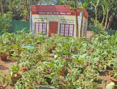Four-day horticulture, floriculture show begins at Kadri Park today