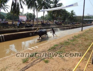 'Kambala Bill will become law soon'