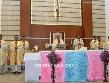 Mount Carmel Feast celebrated at Infant Mary Church, Bajjodi