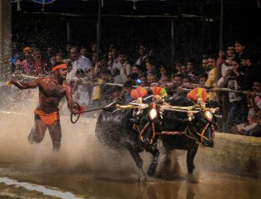 Kambala Samithi to adhere to state govt's conditions