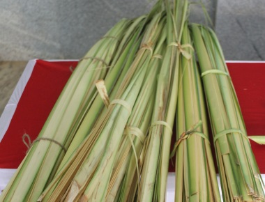 Milagres Cathedral observes Palm Sunday with devotion and gaiety