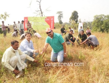 Grow-Trees.com and Vodafone India plant 200,000 trees over  200 hectares of forest land near Devdara & Katangi in Mandla District