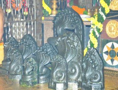 'Naagarapanchami' Celerbaration at Panchakuteer Swarnamandir