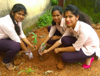 St Agnes Degree College holds plantation drive