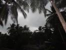 ಮಳೆ ನೀರು ಕೊಯ್ಲು ಕಡ್ಡಾಯ:ದ.ಕ. ಜಿ.ಪಂ.ನಿಂದ ನಿರ್ಣಯ