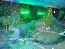 ತೊಕ್ಕೊಟ್ಟು ಸಂತ ಸೆಬೆಸ್ತಿಯನ್ನರ ಚರ್ಚಿನಲ್ಲಿ ಕ್ರಿಸ್ಮಸ್  ಪ್ರಯುಕ್ತ ನಡೆಯುವ ವಿಶೇಷ ಪ್ರಾರ್ಥನೆ