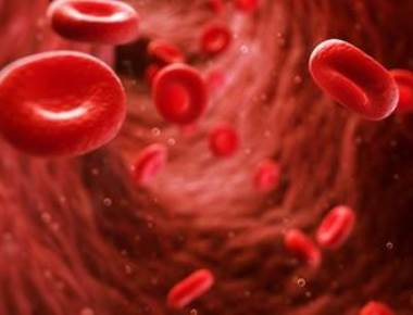 Australian university research holds out hope for thalassemia patients