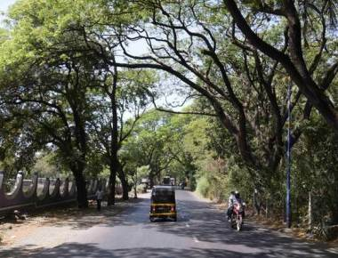 After HC rap, govt. to give Aarey land for Christian cemetery
