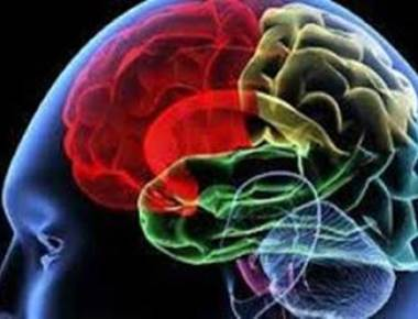 Brain injury ups cognitive impairment risk