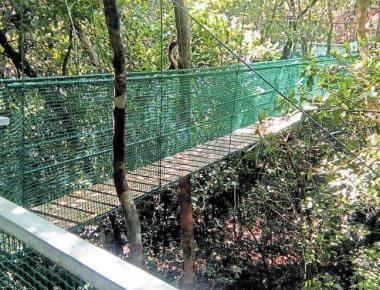 Great Canara Trails to be re-routed to bypass Kali Tiger Reserve