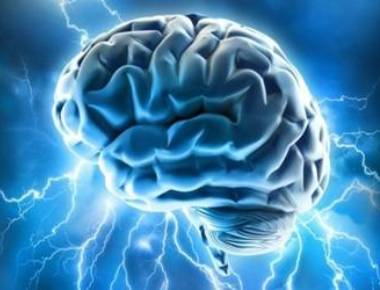 How fat controls energy levels in brain