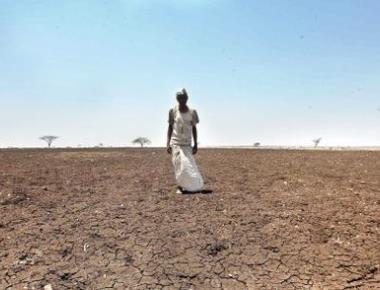 Govt gets HC reminder on farmer suicides