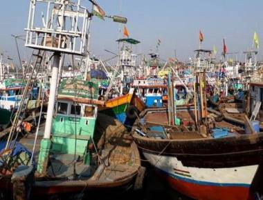 I-T searches reveal undisclosed income by fish processing units