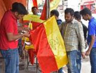Govt planning to grant official status to Kannada flag
