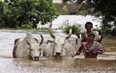 Odisha seeks army, IAF help in flooded areas