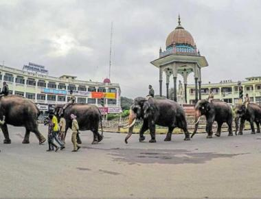 Jumbos begin Dasara rehearsal