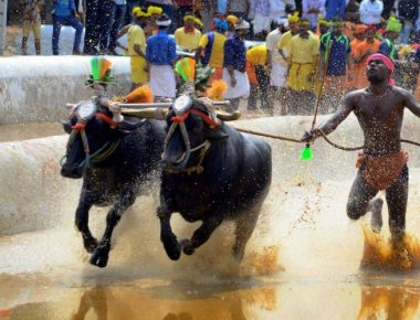 SC judge recuses from hearing plea against 'Kambala'