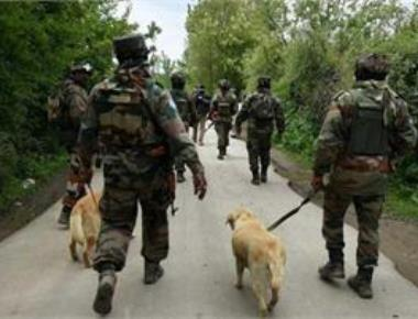 Forces carry out major search op in Kashmir's Shopian for 2nd time in two weeks