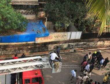 Leopard enters apartment building in Andheri East