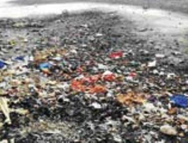 Victory for nature lovers: BMC to rescue Lokhandwala lake down in the dumps