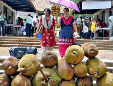 Mouth-watering delicacies made of jackfruit on display at mela
