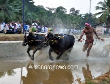 Strong protests to defy ban on Kambala on Jan 28