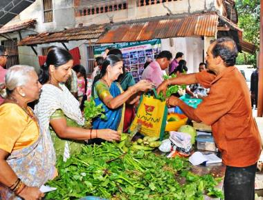 A land to grow organic vegetables