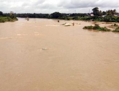 Paddy fields inundated following heavy rain