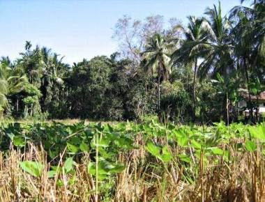 Final notification issued to acquire 960 acres for MRPL
