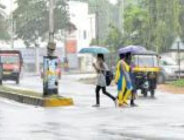 Widespread rain brings cheer for farmers