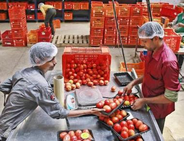 State nod for new retail trade policy