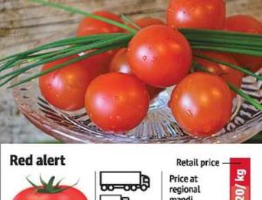 Now, tomato prices hit ?100 a kg.