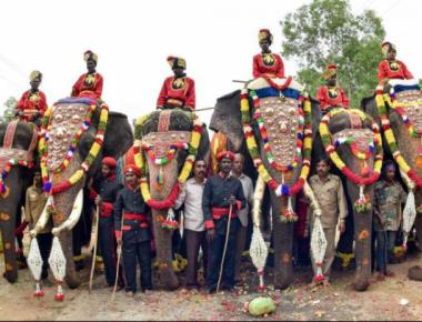 Arjuna to carry howdah for 7th time as Mysuru readies for D-day