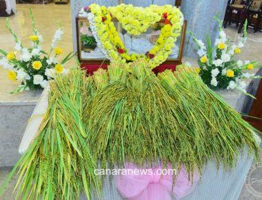 Monthi fest Celebration at St Francis Xavier Church Udyavara