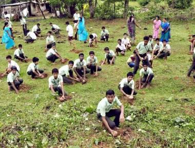 'Vana Samvardhana' campaign begins