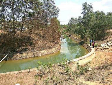Release of water to Varahi project canals sought